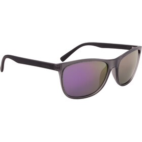 Alpina Jaida Lunettes, grey transparent matt
